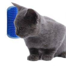 Massage For your Cat